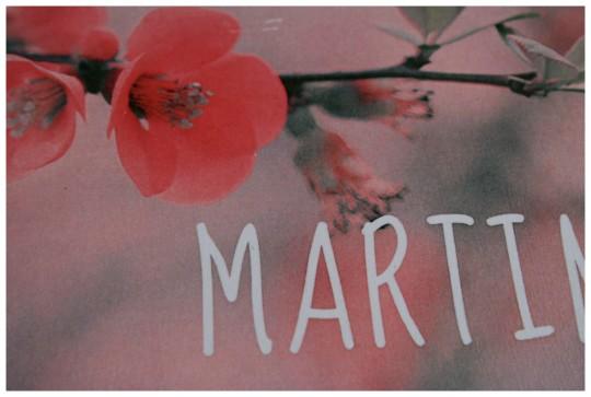 martina ogledalo