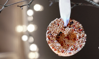 seed-ornament-1