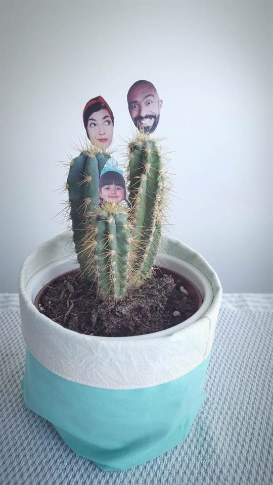 kaktus obiteljski portret