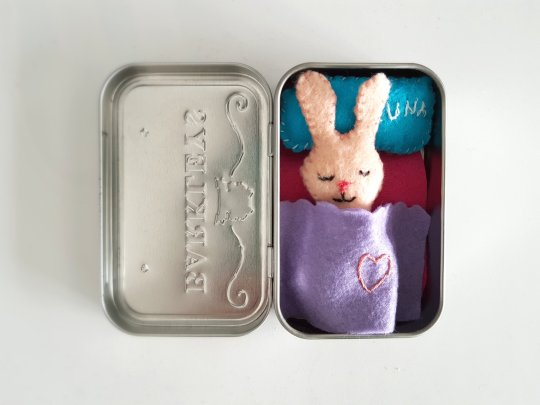 Mini zec u kutiji